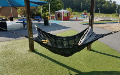 Pet-Friendly Artificial Grass for Dogs in Manteca: The Best Play Surface for Your Kids and Pets