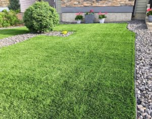 artificial turf facts