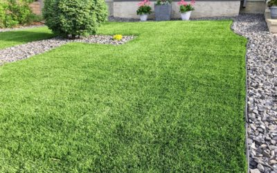 3 Essential Facts Your Artificial Turf Installer in Manteca Wants You to Know