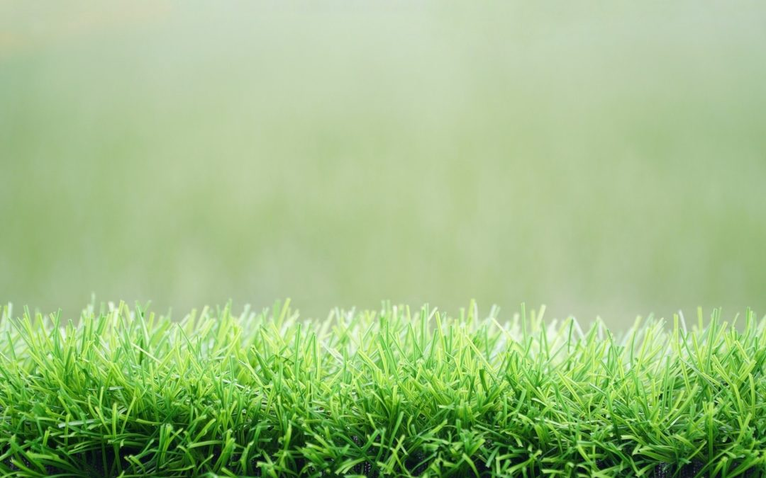 A Look at the Different Blade Shapes of Artificial Grass in Manteca